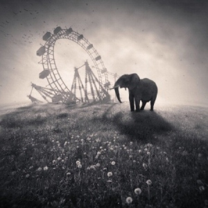 black-and-white-carnival-cute-and-fun-denis-oliver-elephant-ferris-wheel-Favim.com-38482