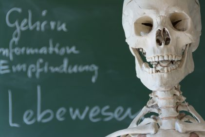 Skelett vor Schultafel